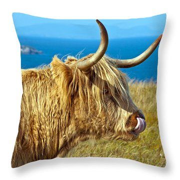 Highland Beauty Throw Pillow