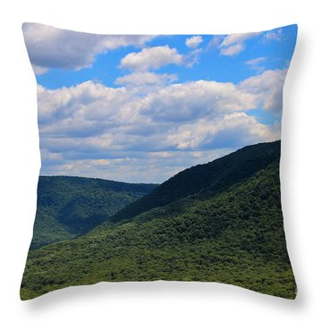 Highland Peace And Serenity Throw Pillow by Rachel Cohen