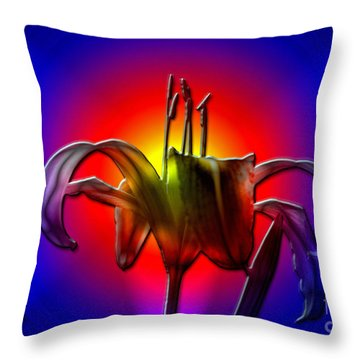 Highlight Of The Day Throw Pillow by Sue Stefanowicz