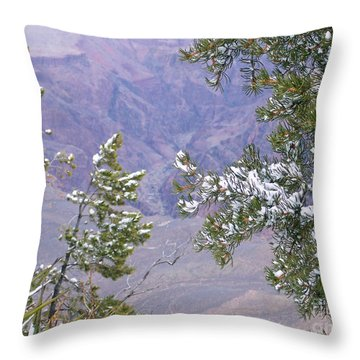 Throw Pillow featuring the photograph Highlighting Snow by Roberta Byram