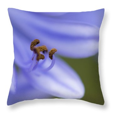 Highly Evolved Throw Pillow