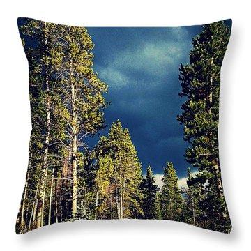 Hike In The Woods Throw Pillow by Garren Zanker