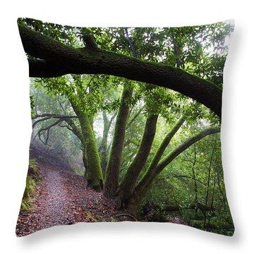 Hiking Huckleberry Throw Pillow by Hugh Stickney