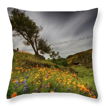Hiking On Table Mountain Throw Pillow