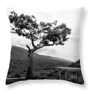 Hildene Tree 5689 Throw Pillow
