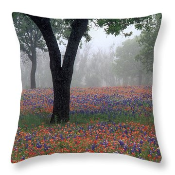 Hill Country - Fs000912 Throw Pillow
