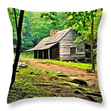 Hillbilly Heaven Throw Pillow by Frozen in Time Fine Art Photography
