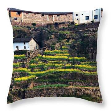 Hillside Color Throw Pillow
