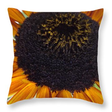 Throw Pillow featuring the photograph Hilltop by Elizabeth Sullivan