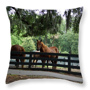 Hilton Head Island Beauty Throw Pillow