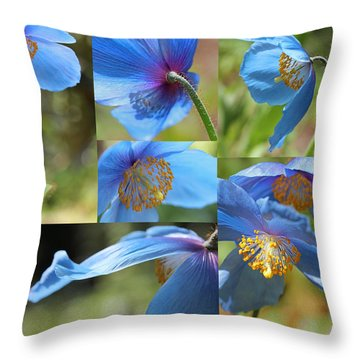 Himalayan Blue Poppy Collage Throw Pillow by Jennie Marie Schell