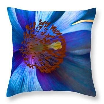 Himalayan Blue Poppy IIi Throw Pillow