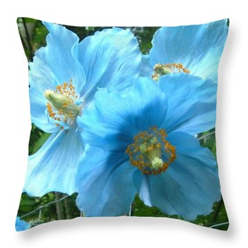 Throw Pillow featuring the photograph Himalayan Poppy by Sharon Duguay