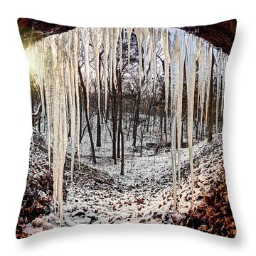 Hinding From Winter Throw Pillow