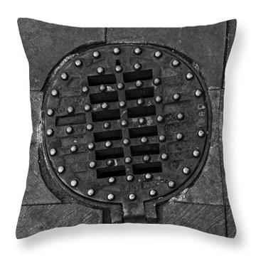 Hinged Manhole Cover Throw Pillow by Lynn Palmer