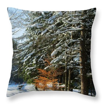Hint Of Color Throw Pillow