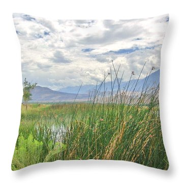 Throw Pillow featuring the photograph Hint Of Water by Marilyn Diaz