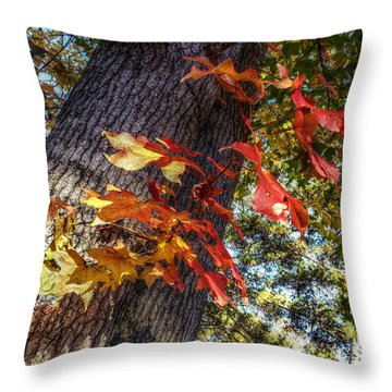 Hints Of Fall Throw Pillow by Linda Unger