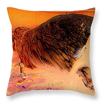 Throw Pillow featuring the photograph Hippo Elegance by Antonia Citrino