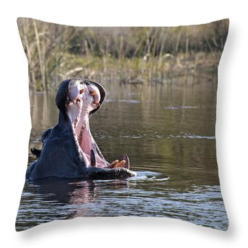 Throw Pillow featuring the photograph Hippo Yawning by Liz Leyden