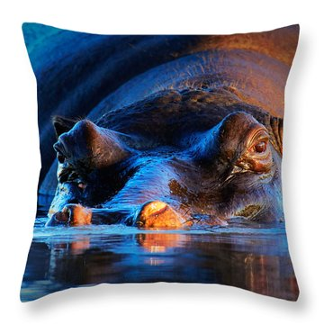 Hippopotamus  At Sunset Throw Pillow