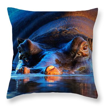 Hippopotamus  At Sunset Throw Pillow by Johan Swanepoel