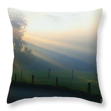 His Light II Throw Pillow by Douglas Stucky