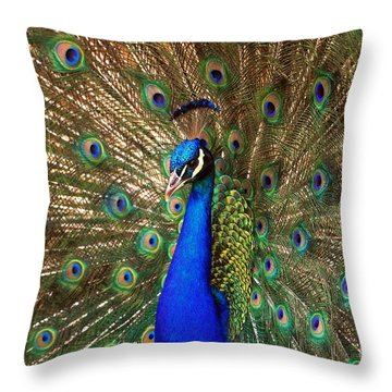 Throw Pillow featuring the photograph His Majesty by Geraldine DeBoer