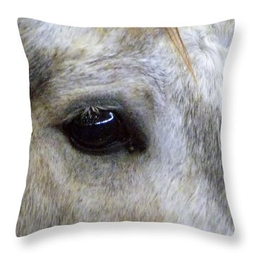 Throw Pillow featuring the photograph His Spirit Was Stolen by John Glass