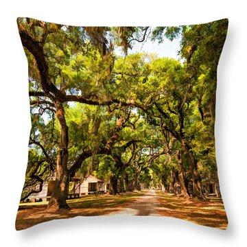 Historic Lane 2 Throw Pillow by Steve Harrington