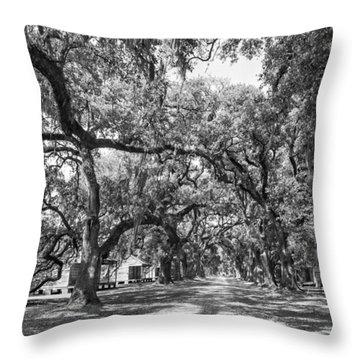 Historic Lane Bw Throw Pillow by Steve Harrington