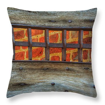 Historical Textures Throw Pillow