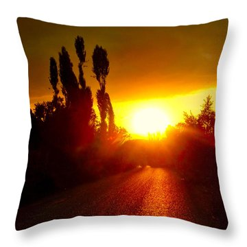 Hit The Road Jack Throw Pillow by Zafer Gurel