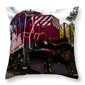 Hlcx 1035 Throw Pillow by Bartz Johnson