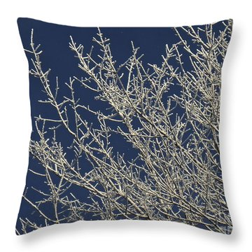 Hoar Frost Morning Throw Pillow by Tim Good