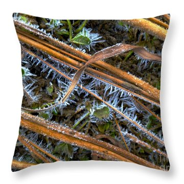 Hoar Frost Throw Pillow by Tim Good