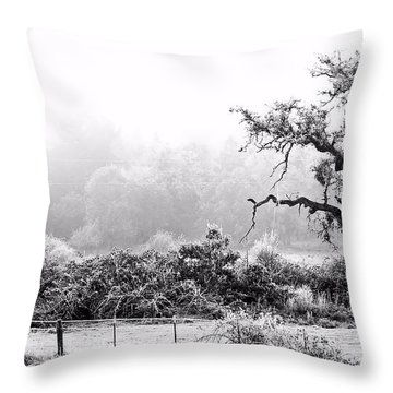 Hoar Frosted Island Throw Pillow