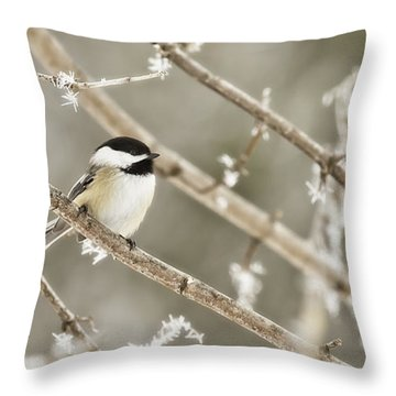 Hoarfrost Morning Throw Pillow