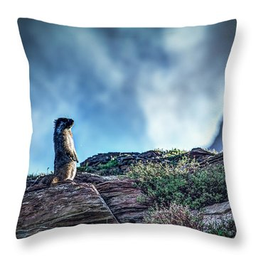 Hoary Marmot Throw Pillow