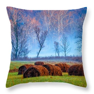 Throw Pillow featuring the photograph Hocking Hills 11 by Brian Stevens