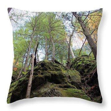 Hocking Hills Moss Covered Cliff Throw Pillow by Karen Adams