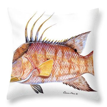Hog Fish Throw Pillow by Carey Chen