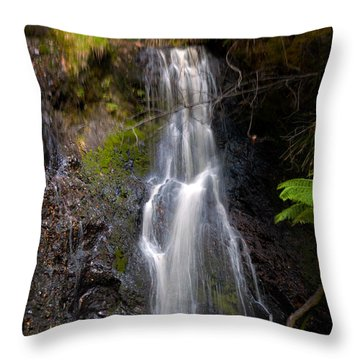 Hogarth Falls Tasmania Throw Pillow