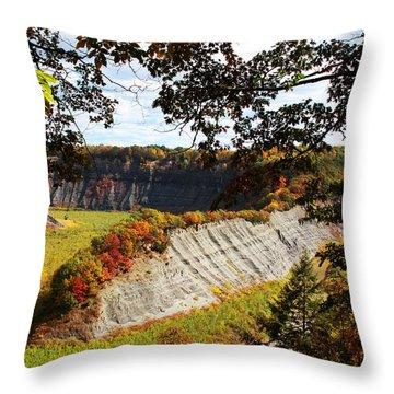 Throw Pillow featuring the photograph Hogs Back Overlook by John Freidenberg