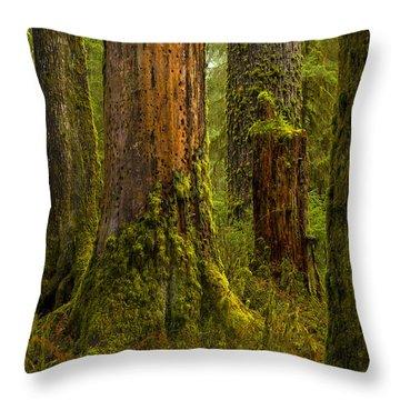Hoh Rainforest 1 Throw Pillow by Joe Doherty