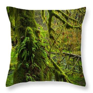 Hoh Rainforest 2 Throw Pillow by Joe Doherty