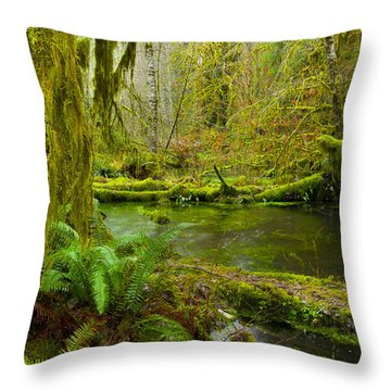 Hoh Rainforest 3 Throw Pillow by Joe Doherty