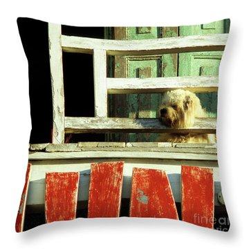 Hoi An Dog 02 Throw Pillow