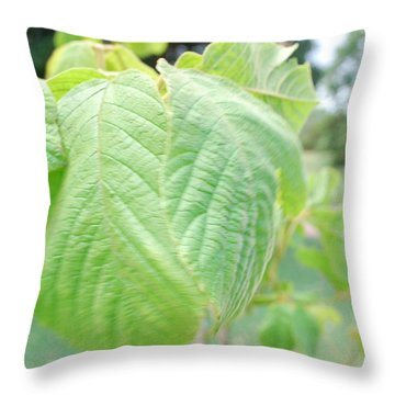 Hoi Throw Pillow