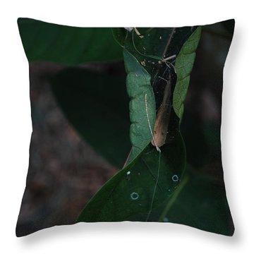 Hojala Throw Pillow